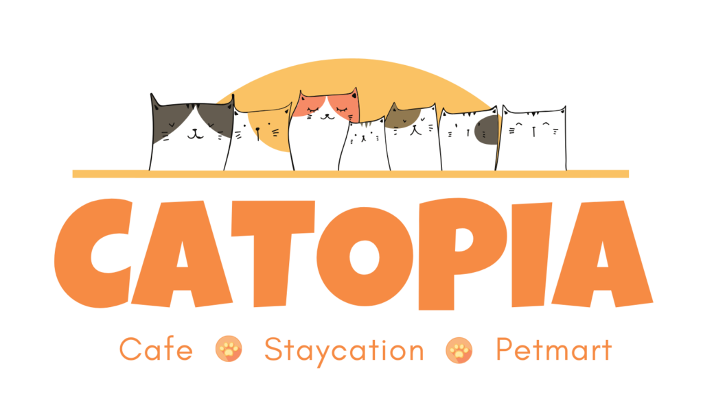Catopia - Staycationfor cats